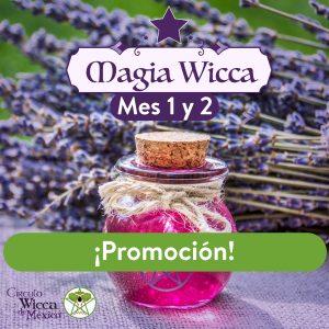 Magiawicca_1y2promo